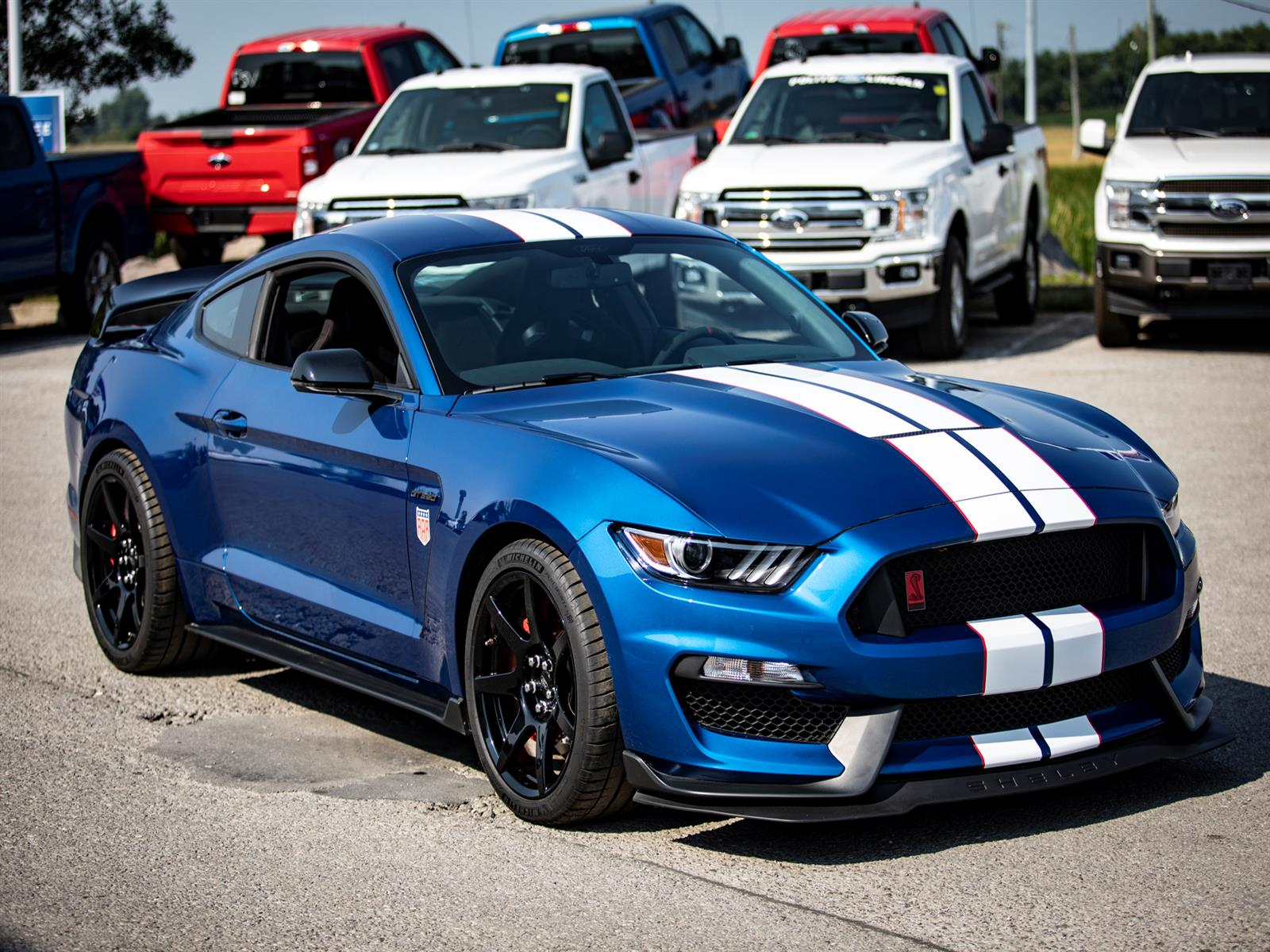 2017 Ford Shelby GT350 R